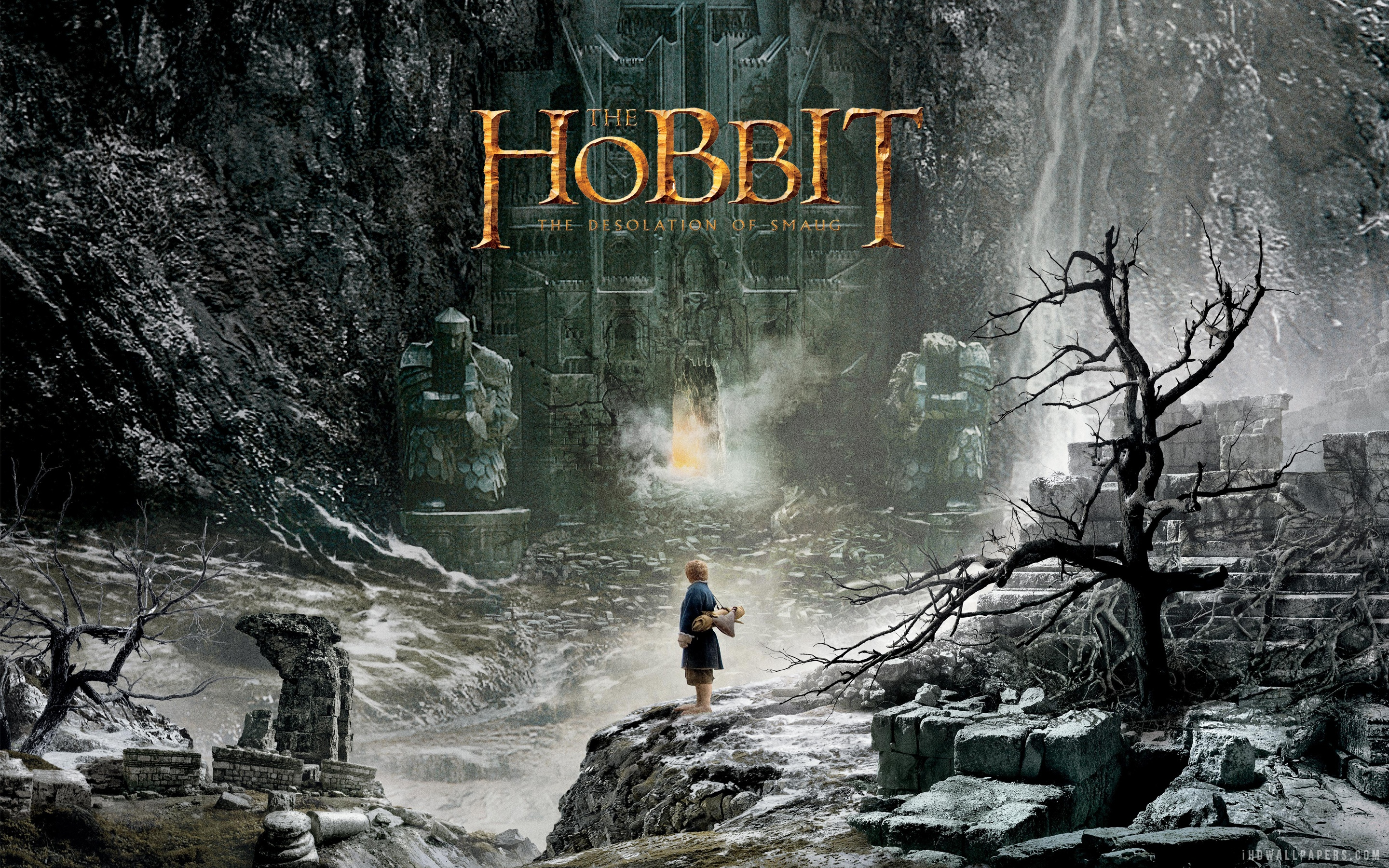 Lord Of The Rings The Desolation Of Smaug Cast