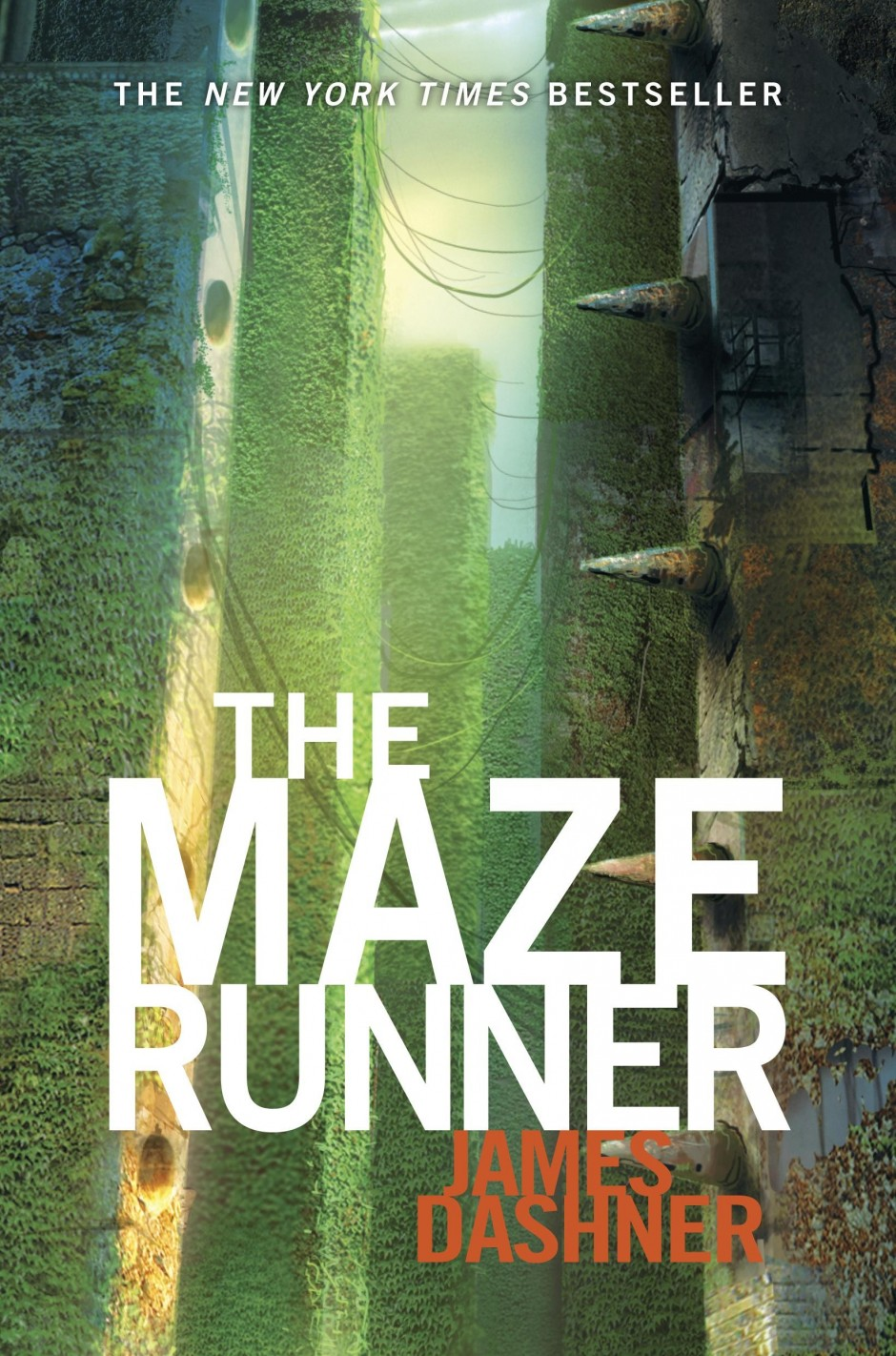 Maze Runner Labyrinth