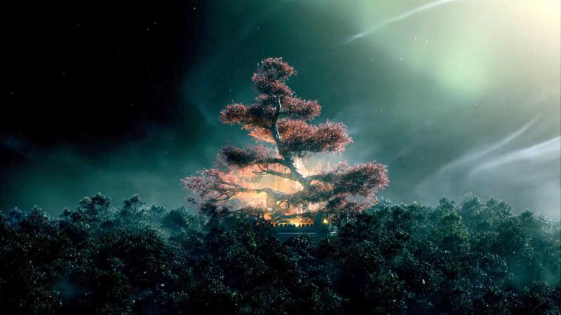 Ellcrys tree